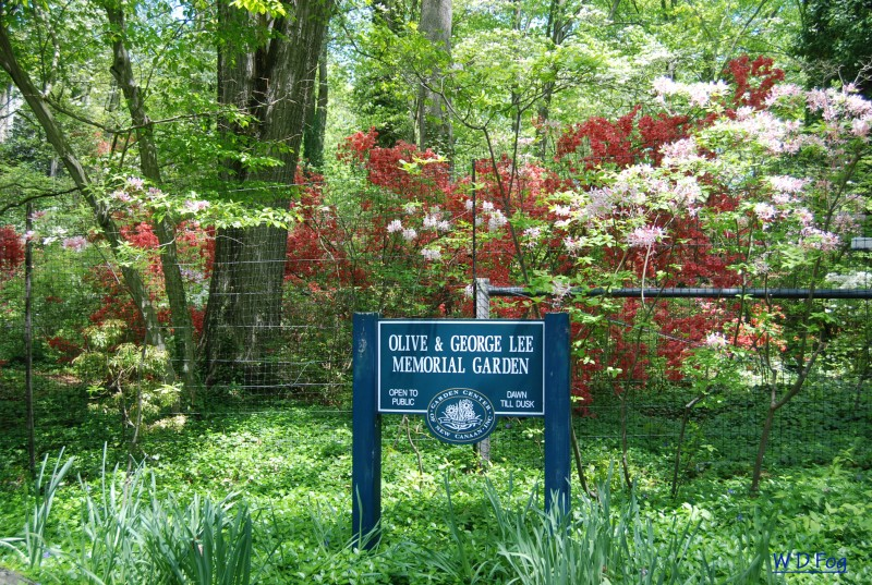 The Lee Memorial Garden in New Canaan